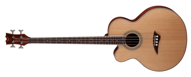 Acoustic/Electric Bass CAW Lefty - SN